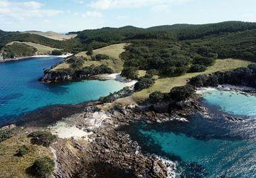 Nuova Zelanda e Australia con Royal Caribbean
