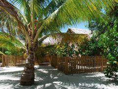 Croisières Mahogany Bay, Honduras