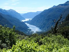 Crociere Doubtful Sound