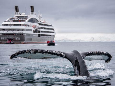 Crociera Ponant Artico